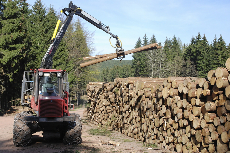 Heizen mit Holz ein umweltfreundlicher Energieträger - Brennstoffhandel Drechsler